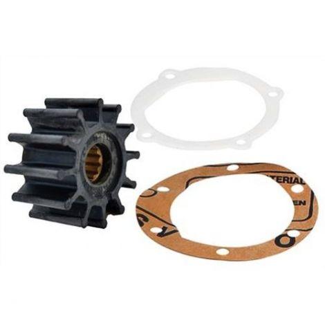 Impeller Kit  21951346, 3858256, 3862281, 875811, 09-1027B, 1210-0001 für Volvo Penta, Jabsco, OMC, Johnson