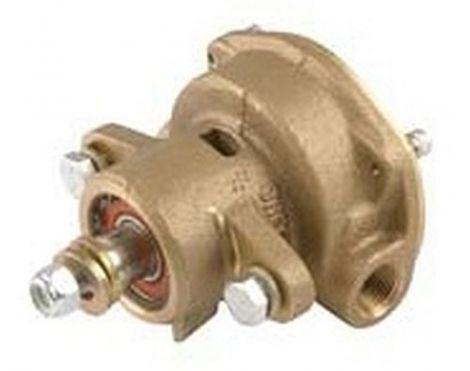 246489, 267373, 344089 Seewasser Pumpe für Kohler Motor